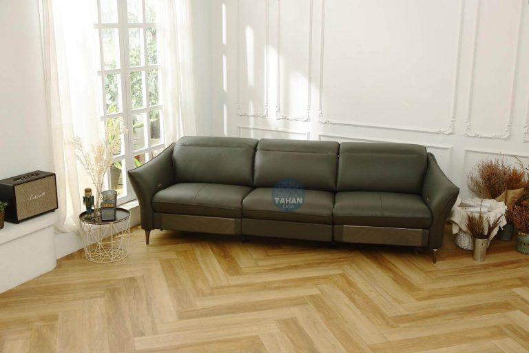 客廳沙發擺設:大漢電動沙發